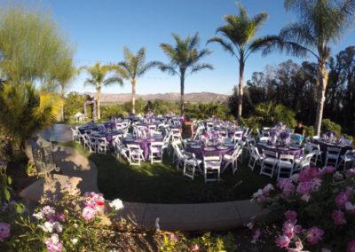 Bravo Events Wedding Anniversary Coordinator
