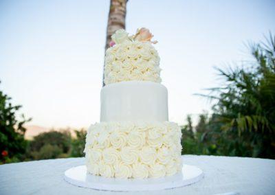 Jon-Adriana-Wedding-4